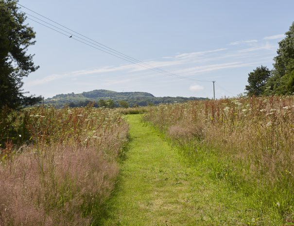Path to the football pitch